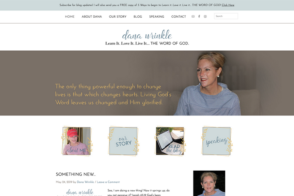 Dana Wrinkle: Custom WordPress Design